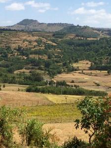 ÄthiopienNov2015 - 108 von 151